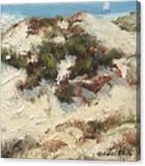 Ventura Dunes I Canvas Print