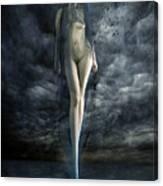 Venus Noir Canvas Print