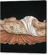 Venus On The Half-shell Canvas Print
