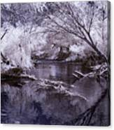 Verde Spring Reflections Canvas Print