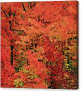Vermont Autumn Canvas Print