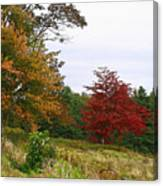 Vermont Roadside Color Canvas Print