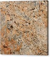 Versace Granite Canvas Print