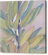 Vertical Banana Bunch Canvas Print