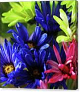 Vibrant Chrysanthemums Canvas Print
