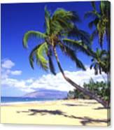 Vibrant Green Palms Canvas Print