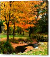 Vibrant October Canvas Print