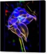 Vibrant Orchid Canvas Print