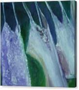 Vibrant Still Life Paintings - Wash Day - Virgilla Art Canvas Print