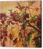 Viburnum Canvas Print