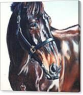 Victor Canvas Print