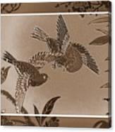 Victorian Birds In Sepia Canvas Print