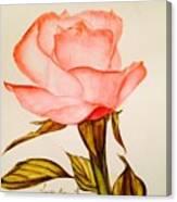 Victorian Rose  Canvas Print