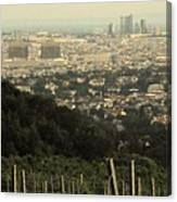 Vienna From The Vineyard Canvas Print