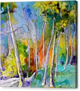Vieux-boucau 05 Canvas Print