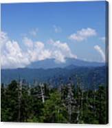 View From Clingman's Dome Canvas Print