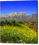 View From Dripping Springs Rd Canvas Print