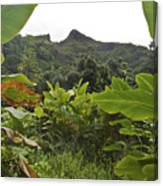 View From Likeke Canvas Print
