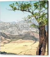View From Ronda Spain Canvas Print