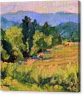View From The Orchard Canvas Print