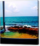 View From The Window Canvas Print