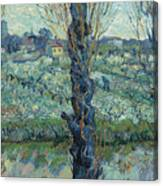View Of Arles, Flowering Orchards Canvas Print
