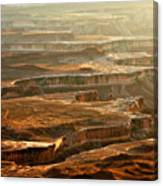 View Of Canyonlands Canvas Print