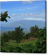 View Of Mauna Kahalewai West Maui From Keokea On The Western Slopes Of Haleakala Maui Hawaii Canvas Print