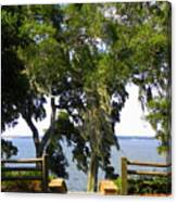 View Of Old Tampa Bay Canvas Print
