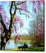 View Of The Lake In Spring Canvas Print