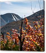 View On The Way Up Mt. Jo, Adirondacks Canvas Print