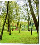 View Through The Trees Canvas Print