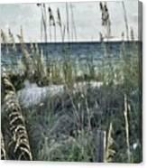 Viewpoint Mine Canvas Print