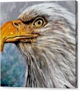 Vigilant Eagle Canvas Print