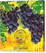 Vigne De Raisins Canvas Print