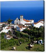 Village in the Azores Canvas Print