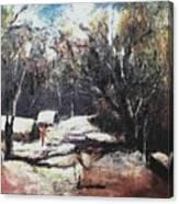 Village Road-3  Canvas Print