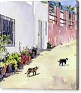 Village Street With Cats In Hortichuelas Canvas Print