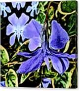 Vinca Art Canvas Print