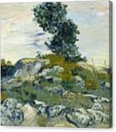Vincent Van Gogh, The Rocks Canvas Print