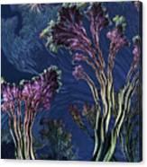 Vincent's Reef Canvas Print