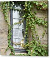 Vine-covered Mysteries I Canvas Print