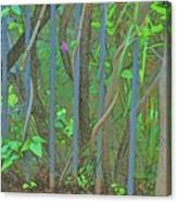 Vines Abstract IIi Canvas Print