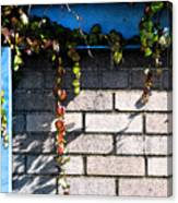 Vines On Blue Canvas Print