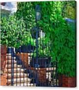 Vines Over Gate Canvas Print