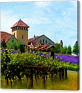 Vineyard And Heather Canvas Print