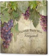 Vineyard Series - Chateau Pinot Noir Vineyards Sign Canvas Print