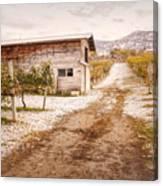 Vineyard Store House Canvas Print