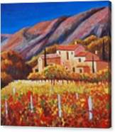 vineyards of Provence Canvas Print