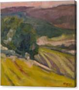 Vineyards Of The Luberon Canvas Print